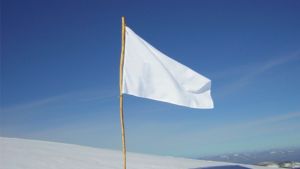 Qual bandeira você tem levantado?